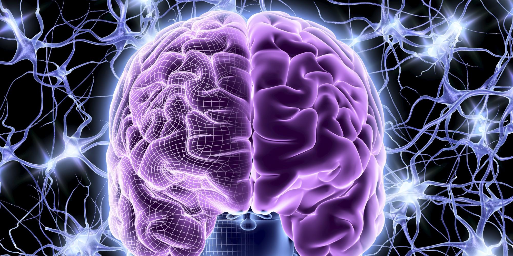Способы заставить работать мозг на 100%. Улучшение работы мозга.