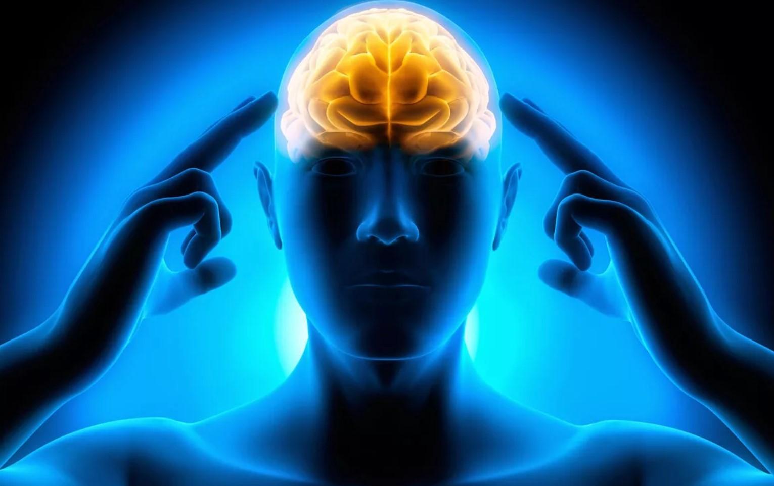 Сила нашего мозга