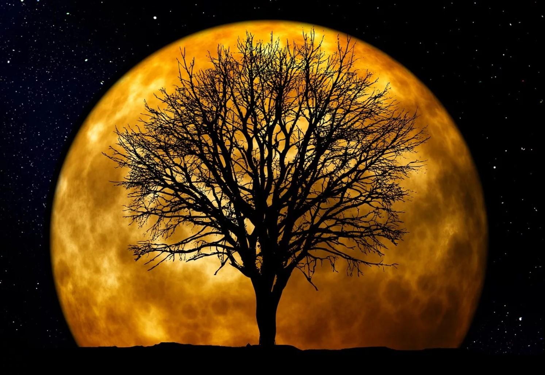 Что нас ждет в 2021 году: гороскоп для всех