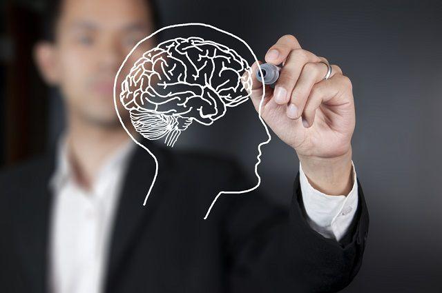 Препараты улучшающие работу мозга